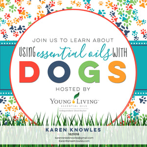 How To Use Essential Oils On your Dogs 101- With DIY Recipes