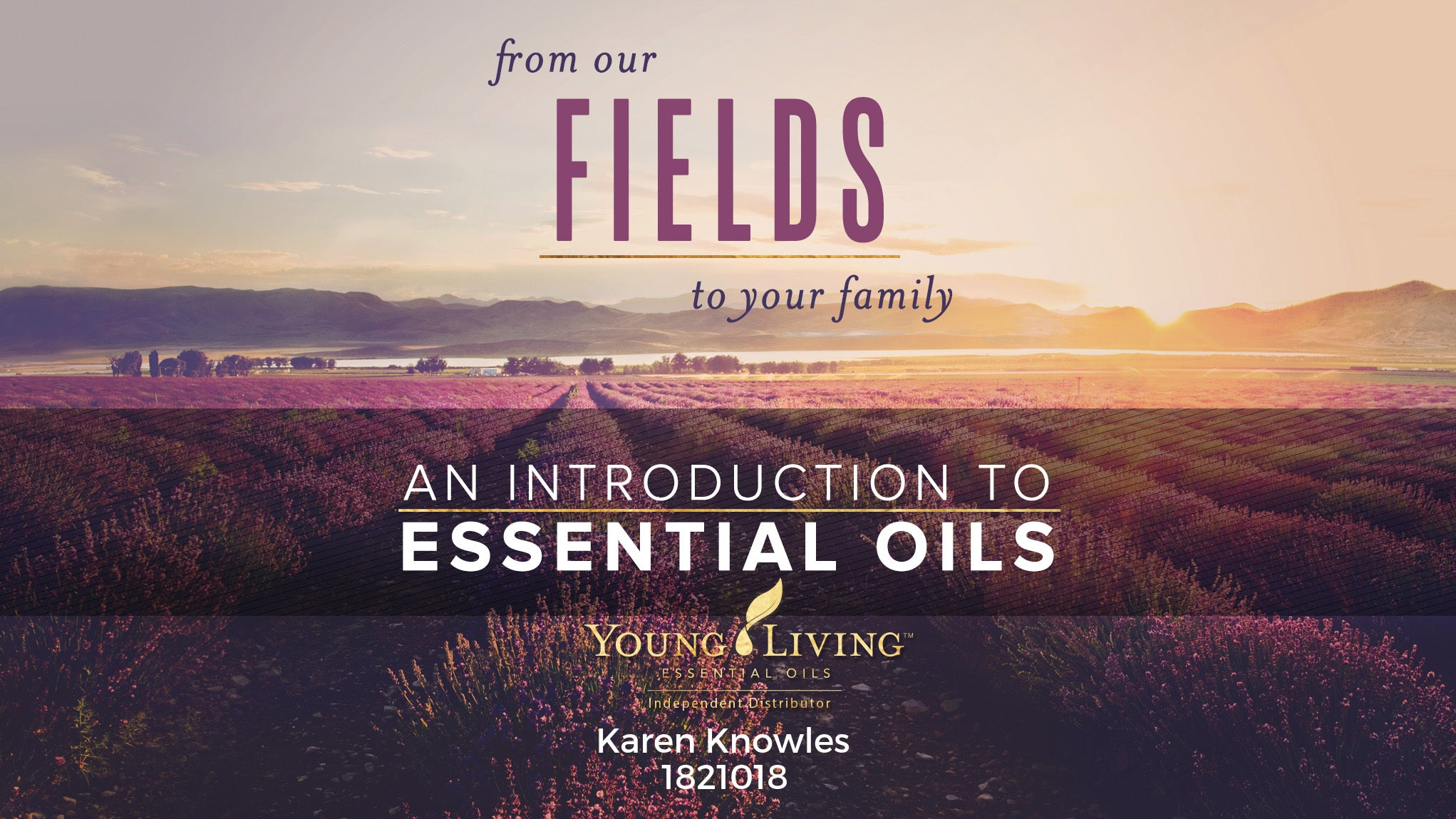 Young Living Starter Guide and Usage Ideas