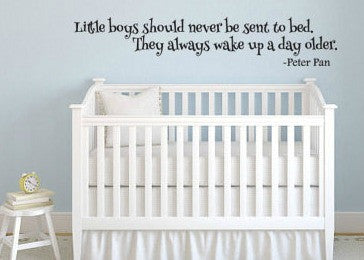 "Peter Pan Little Boys Always Wake Up A Day Older Wall Decal Sticker 32.3""w x 6""h"