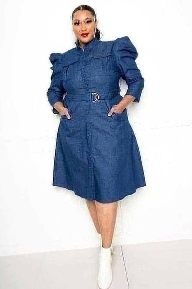 Curvy Puff Sleeve Denim Dress