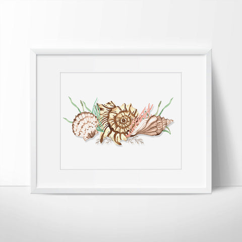 Seashell Printable Wall Art - Printable Haven