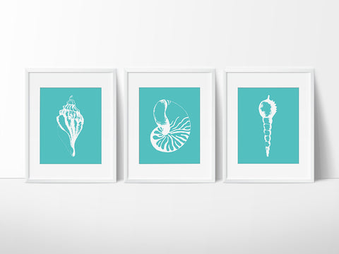 Teal Seashell Trio Printable Wall Art Set - Printable Haven