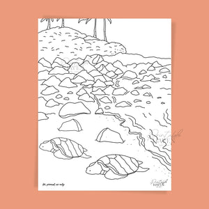 Turtle Bay Coloring Page Printable