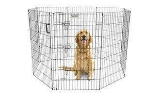 Ultimate Exercise Pen