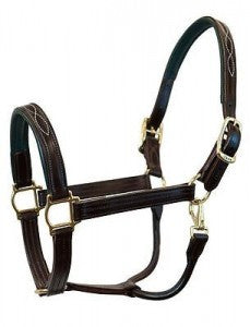 WALSH Fancy Padded Leather Halter - Havana Brown w/navy Padding - Size horse - Mikes Instinct