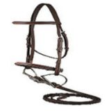 DaVinci Fancy Raised Bridle with Flat Laced Reins - Mikes Instinct