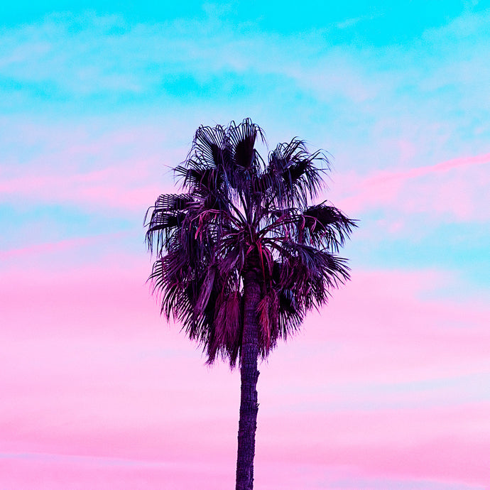 Candy Sunset Palm