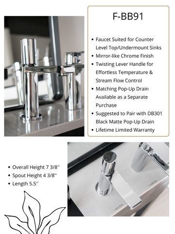 Zeek Chrome Single Handle Bathroom Faucet F-BC91