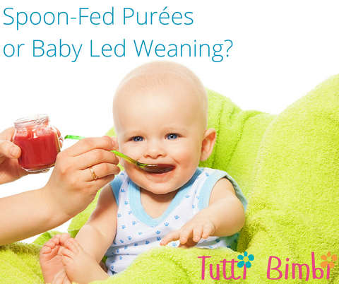 spoon fed purees or baby led weaning