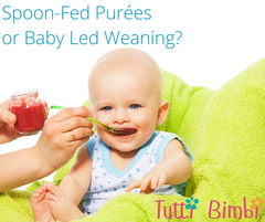 spoon fed puree or baby led weaning