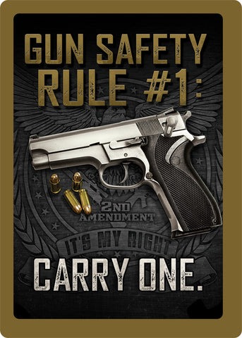 "12"" x 17"" Tin Sign - Gun Safety"