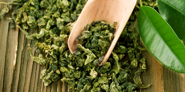 Green Tea Extract: The Natural Fat Burner