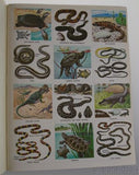 Golden Stamp Book Snakes Turtles Lizards Stickers 4th Printing 1973 Smith Irving - FUNsational Finds - 3