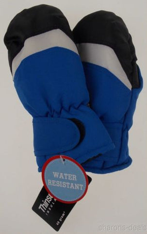 Wonderkids Toddler Blue Winter Mittens 3M Thinsulate Lined One Size Snow NEW - FUNsational Finds - 1