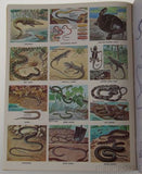 Golden Stamp Book Snakes Turtles Lizard Stickers 15th Printing 1981 Smith Irving - FUNsational Finds - 3