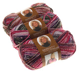 Serenity Chunky Leaves Premier Yarn Deborah Norville Lot 3 Skein Ball Variegated