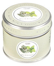 Mint & Eucalyptus Tin candle