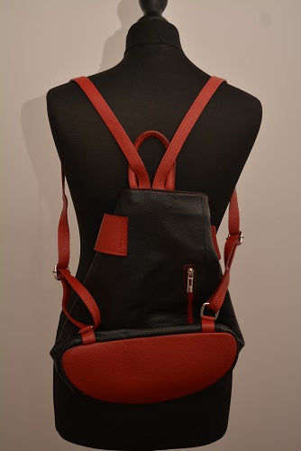 Contrasting Leather Backpack in Black & Red