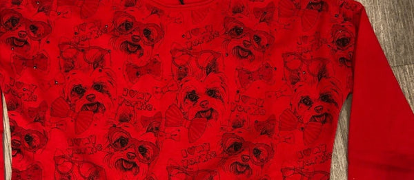Dog Embellished Red Jumper