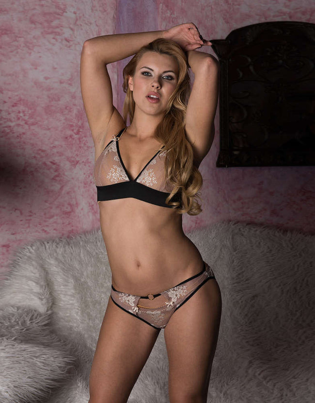Plus Size Lace Embroidered Sheer Panties - Females Fashion