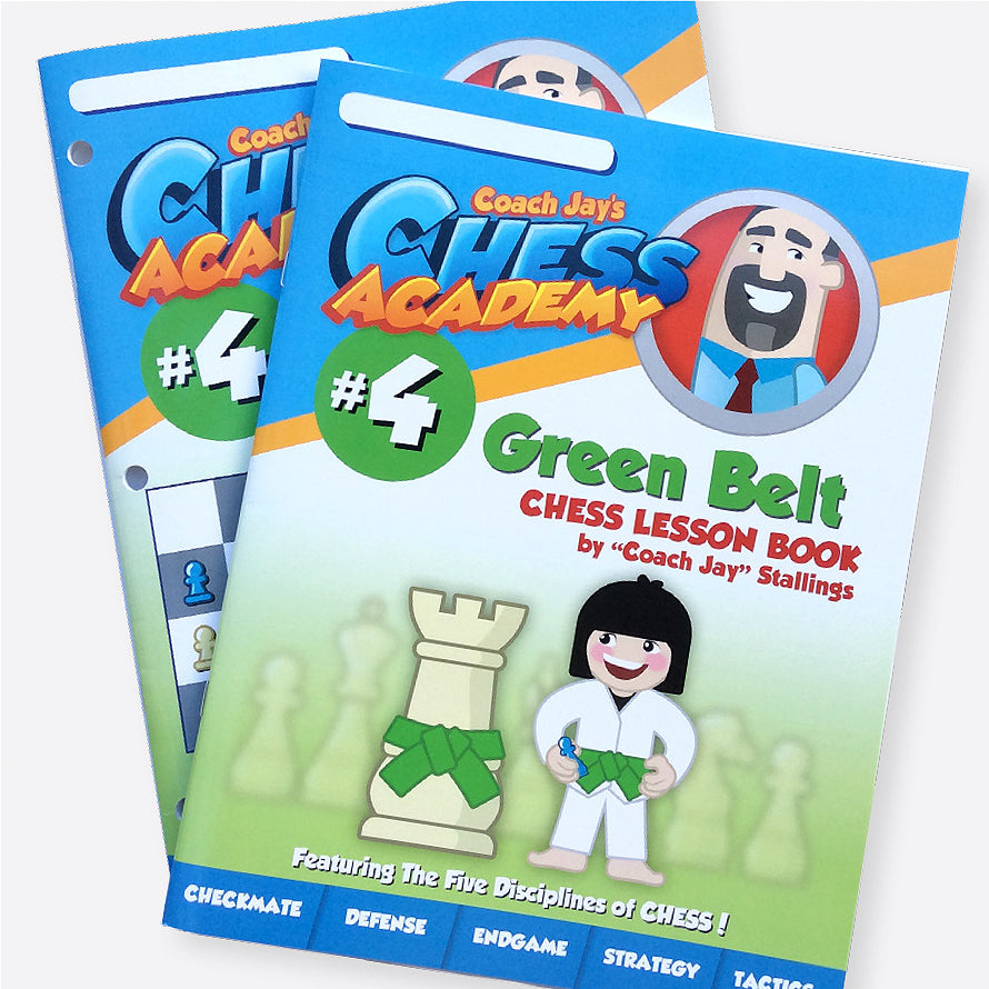 Green Belt Level 4 Set (Lesson Book & Puzzle Pack)
