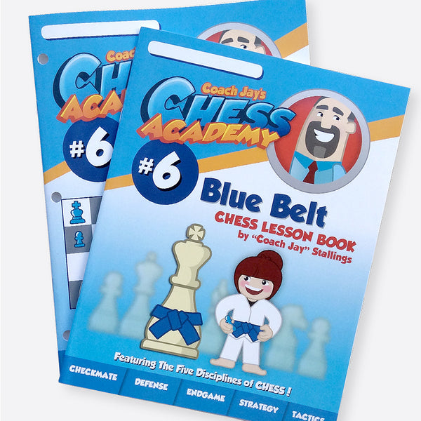 Blue Belt Level 6 Set (Lesson Book & Puzzle Pack)