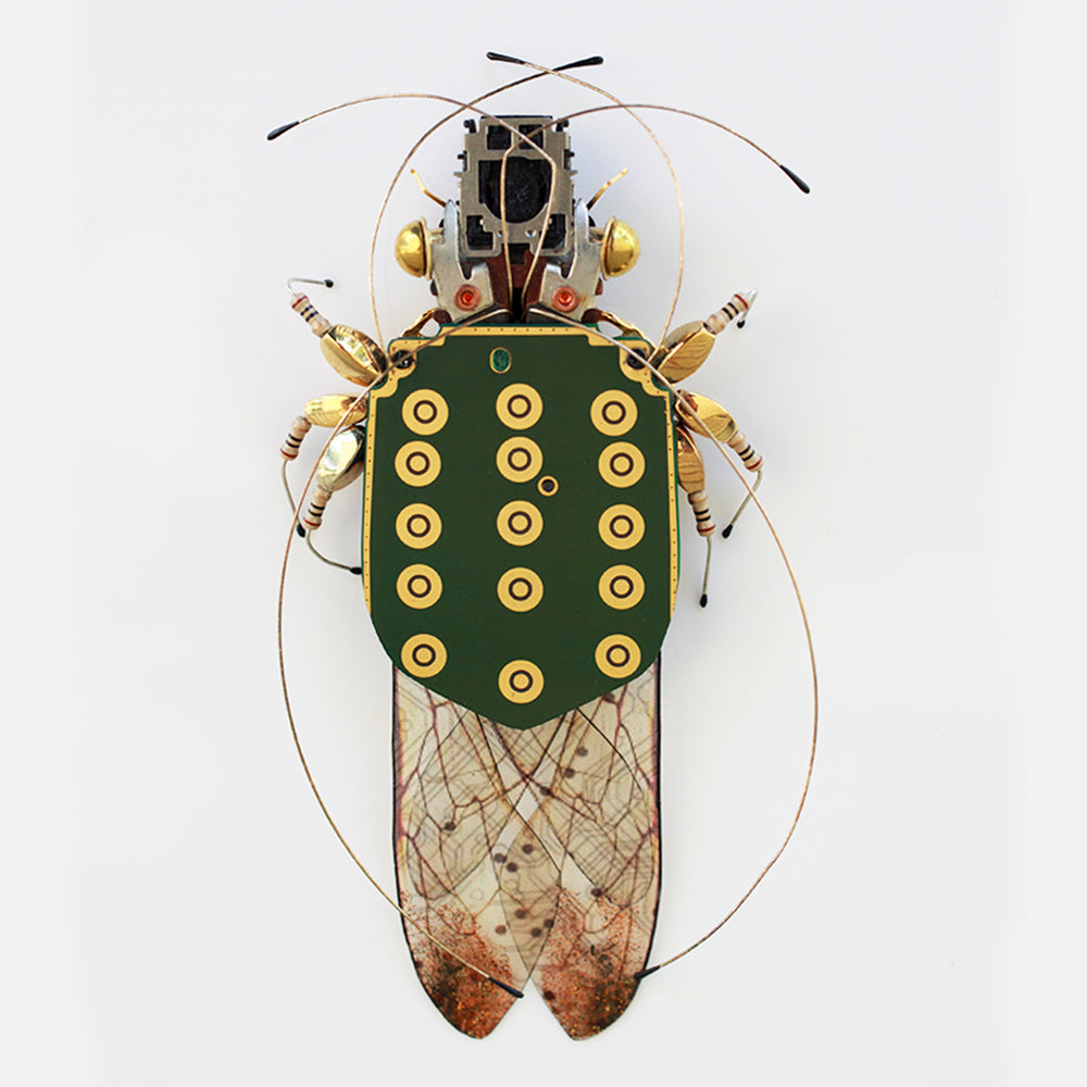 Circuit Board Golden Cicada | Upcycled, Recycled, Repurposed, Reimagined | Changing Tides