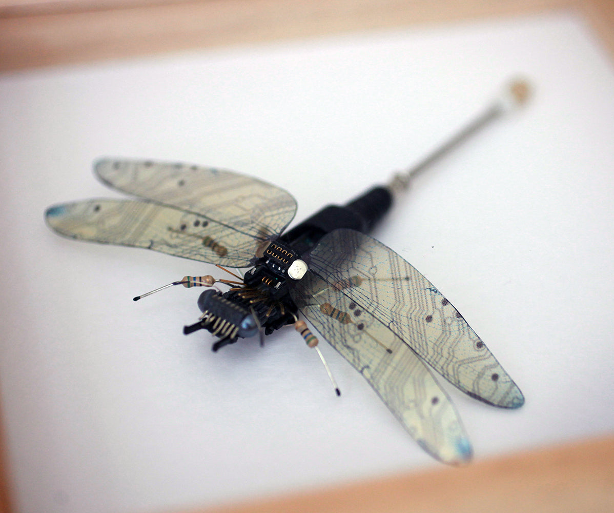 Circuit Board Dragonfly | Seeds for Kindness | Upcycled, Repurposed, Reimagined