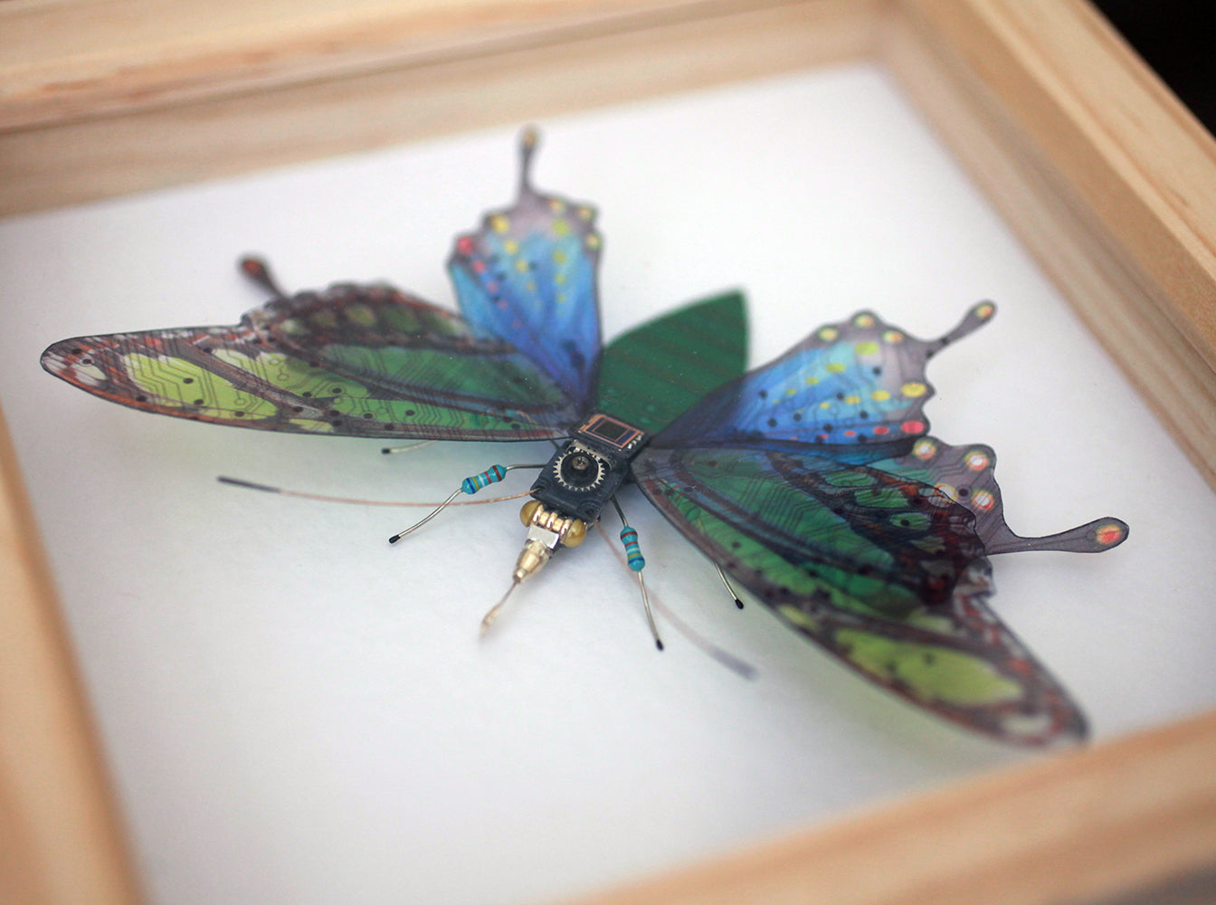 Circuit Board Swallowtail Butterfly | Upcycled, Recycled, Repurposed, Reimagined | Changing Tides
