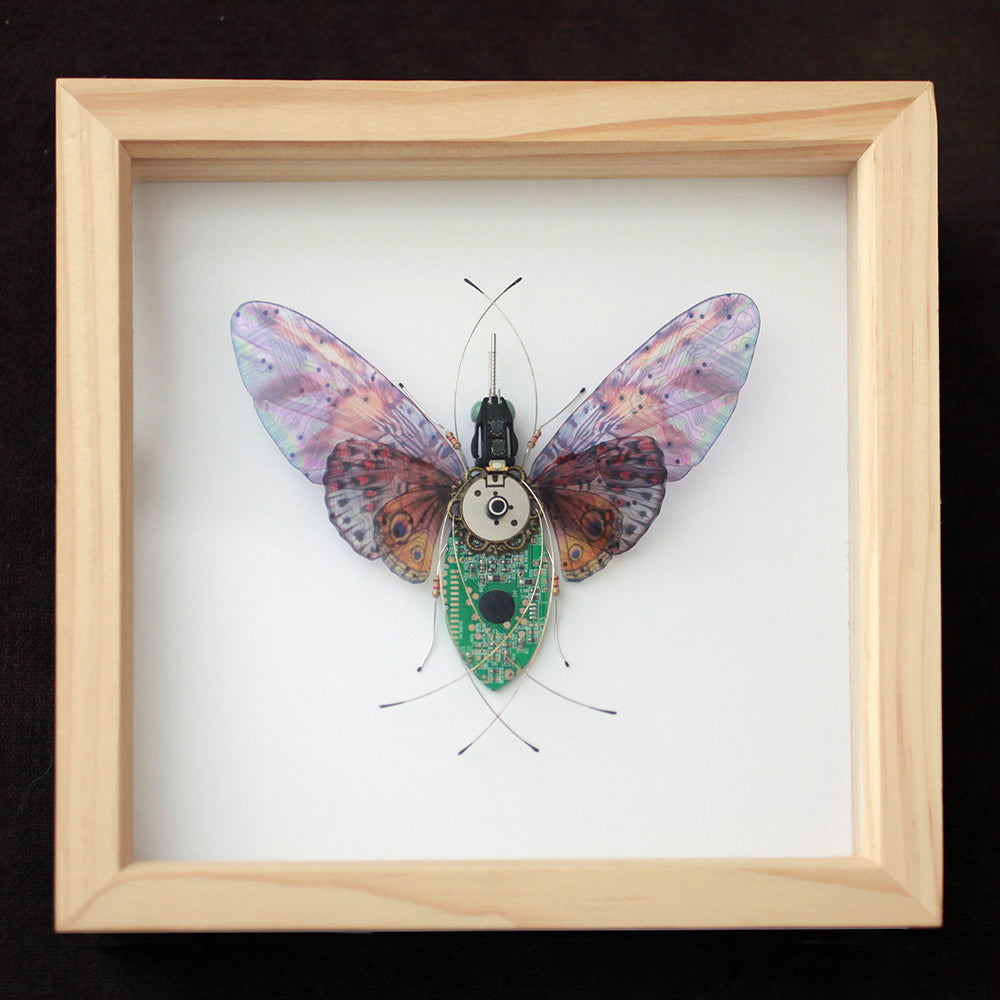 Upcycled Technology Jewelry Art Seeds For Kindness Home Circuit Board Square Frame Triple Winged Butterfly Repurposed Reimagined
