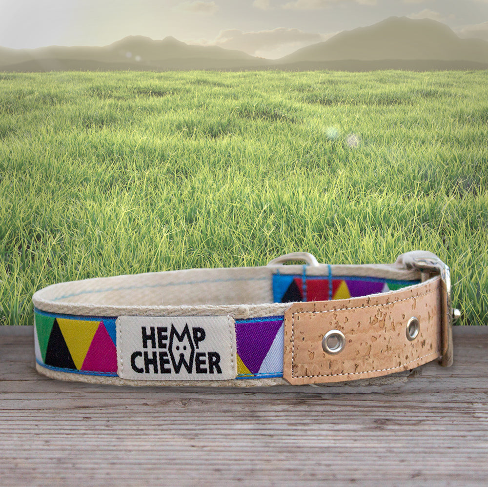 Hemp Dog Collar - Hipster with Cork | Seeds for Kindness