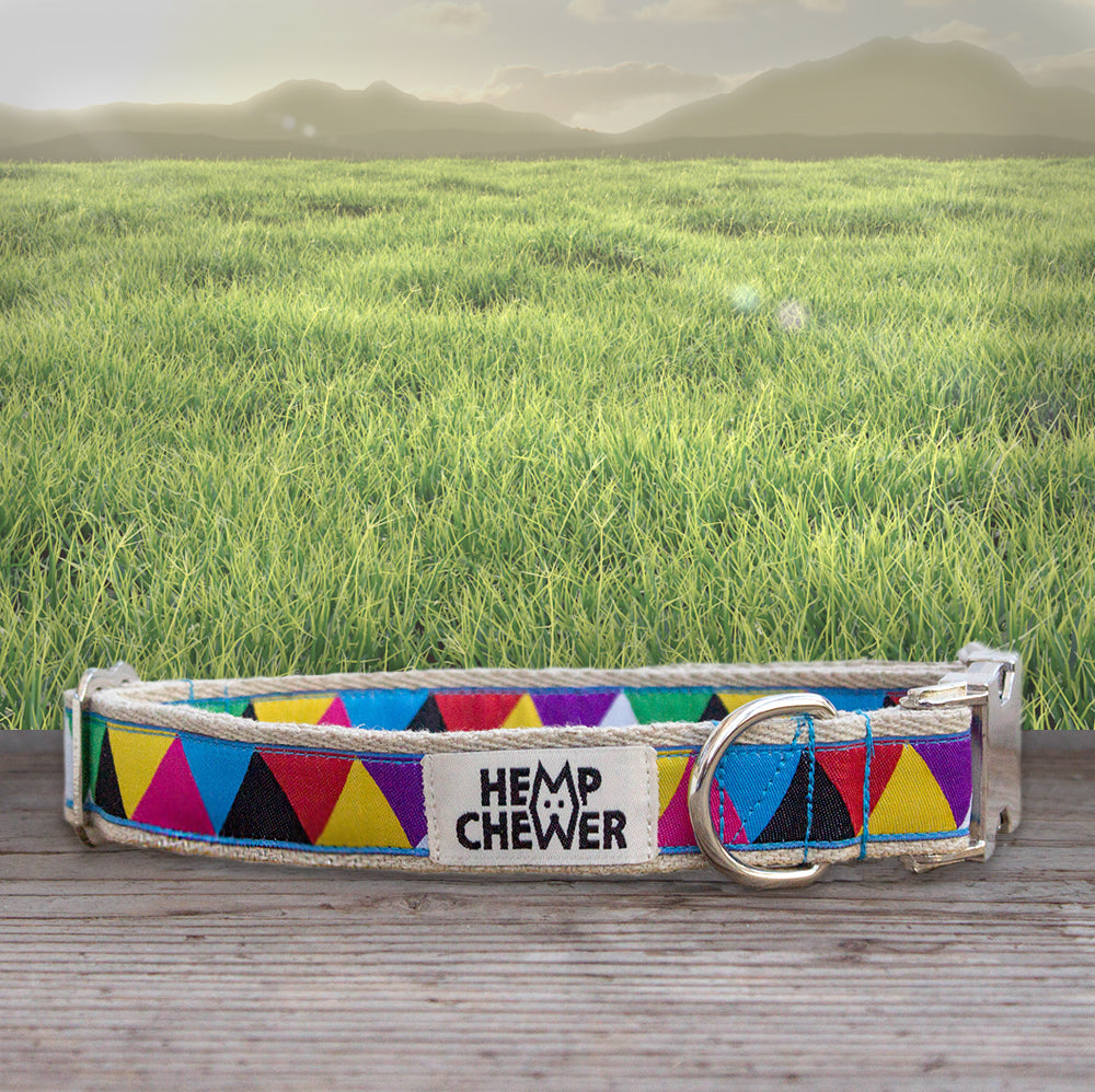 Hemp Dog Collar - Hipster | Seeds for Kindness