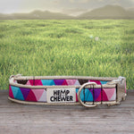 Hemp Collar - Hipster II | Upcycled, Recycled, Repurposed, Reimagined | Seeds for Kindness