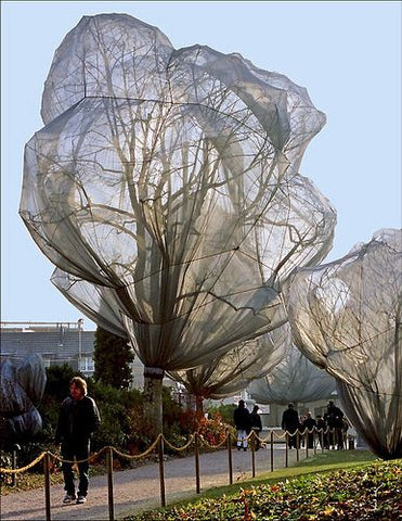 trees covered by gray black transparent fabric on the roadside. by artists Christo & Jeanne-Claude.