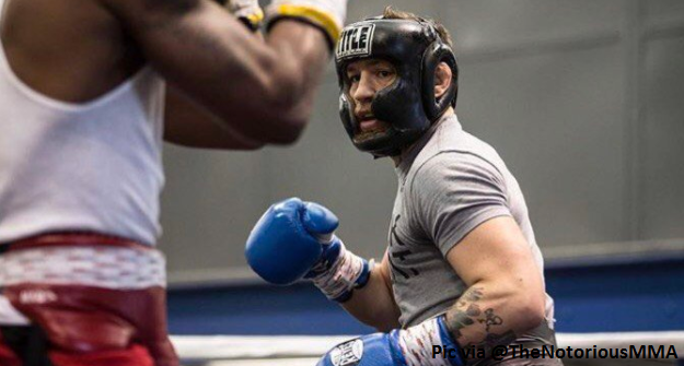 Meet three of the boxers McGregor has brought into his camp