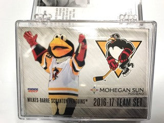 Team card set 2016-17
