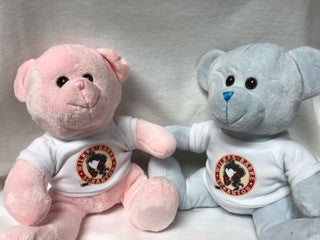 pink or blue bear w/WBS Penguins tshirt