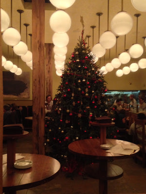 12ft Fraser Fir at Publican