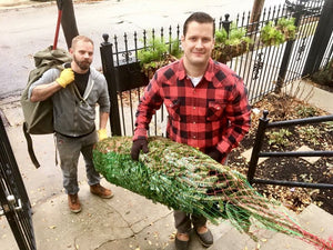 City Tree Delivery Fraser Fir delivery team