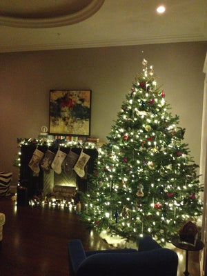 Fraser Fir Tree with soft white lights