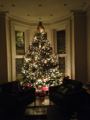 12ft Fraser Fir with white LED lights