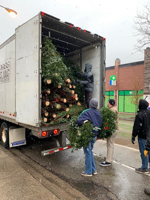 Unloading Christmas trees from a semi-truck