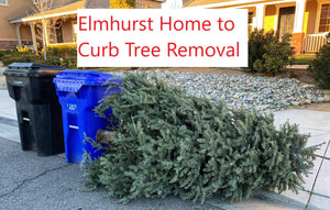 Elmhurst Home to Curb Removal Trees up to 10ft