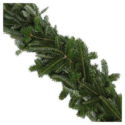 Fraser Fir Garland/Roping: 25ft roll