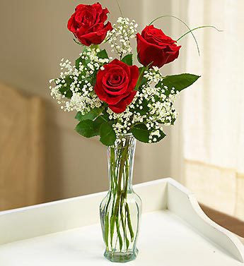 Love & Embrace Red Roses with Gyp, 3 Rose Stems