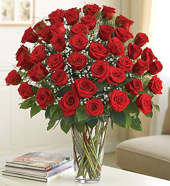 Ultimate Elegance Premium Long Stem Red Roses, Three Dozen