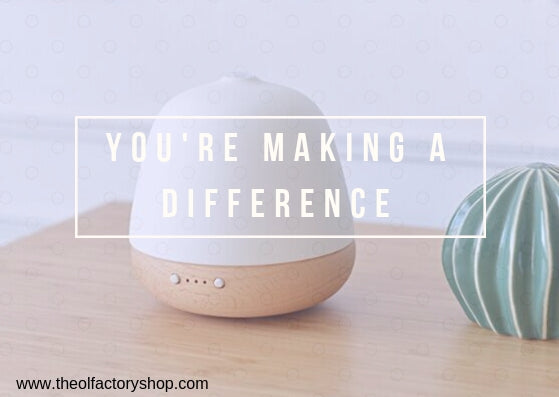 Our New Diffuser - How it came to be, how it's working for Cambodia and how you can get it!