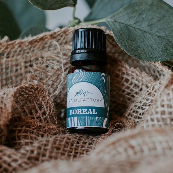 Boreal essential oil blend is inspired by time in the forest. bring the forest inside with this blend of grapefruit, eucalyptus, vanilla and Canadian Balsam Fir essential oils