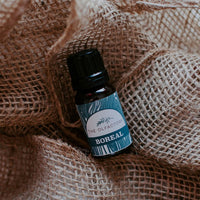 Boreal blend essential oil. All natural fragrance for the home
