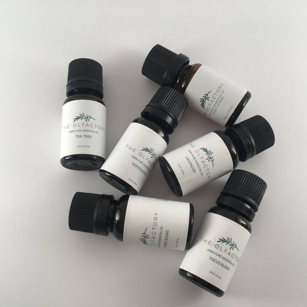 The Single Notes Essential Oil Bundle